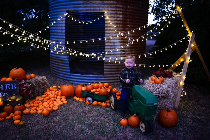 Miracle Lane Pumpkin Patch Mini Sessions