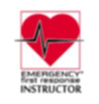 Curso Instructor Primeros Auxilios (EFR)