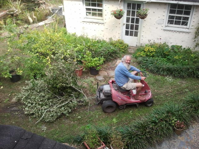 Tom pulling branches with the riding mower
