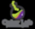Color-Lab-Logo.png