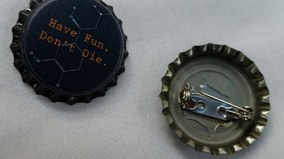 """Have fun, don't die"" bottlecap pin"