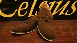 Celcius Shoes.png
