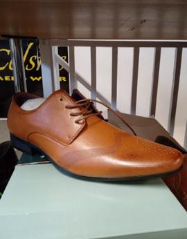 Celcius Shoes 2.png