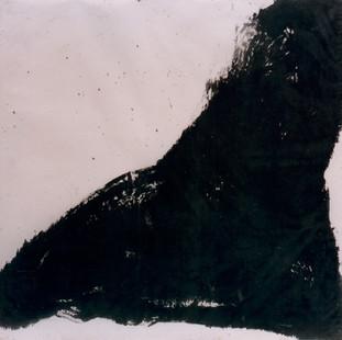 D3, 1995