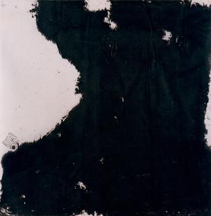 D2, 1995