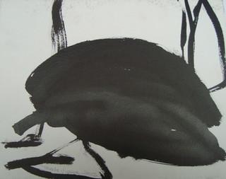 N1, 2005