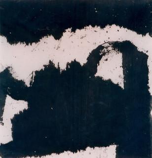 D1, 1995
