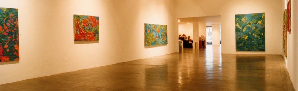 1996, individual [solo].