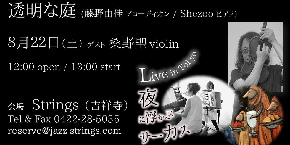 透明な庭 Live with 桑野聖