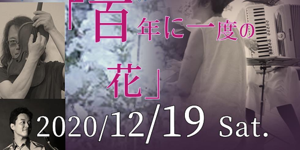 透明な庭スペシャルコンサート@音倉 「百年に一度の花」guest桑野聖+加藤里志