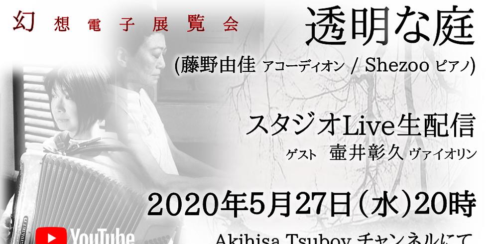 透明な庭配信ライブ「幻想電子展覧会」