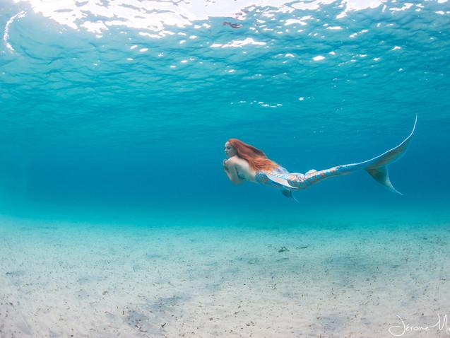 Crédit Photo : Phot'eau Corse / Jérome Mirande