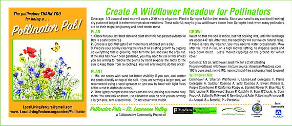 Pollinator Seed Packet Instructions full
