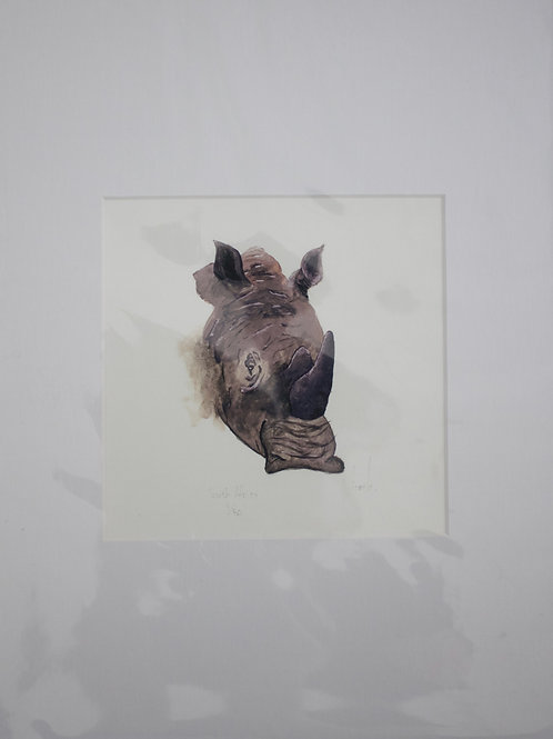 South Africa's Rhino