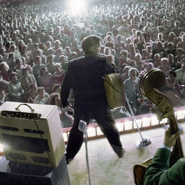 White Eskimo Love Elvis