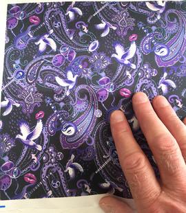 Paisley-Prince-Songbook-tiny-version-pri