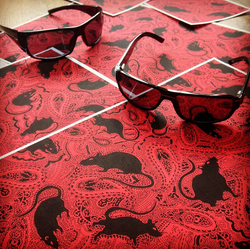 paisley-rat-graphic-design-for-rock-band-by-Patrick-Moriarty