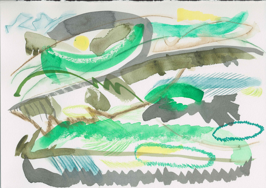 SCN_rainbow-lorikeet-landscape.jpg