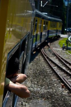 Alpine Train