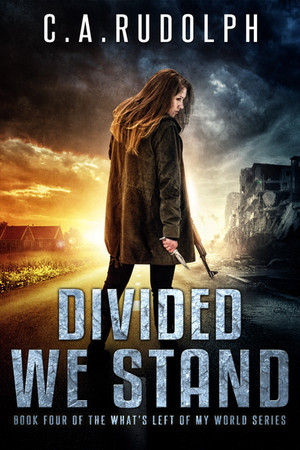 Divided We Stand - Book 4 is now Available!