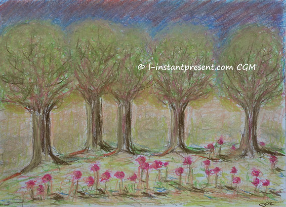 Des fleurs et des arbres