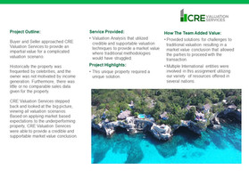 Resort Case Study