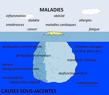 Nutrition fonctionnelle iceberg