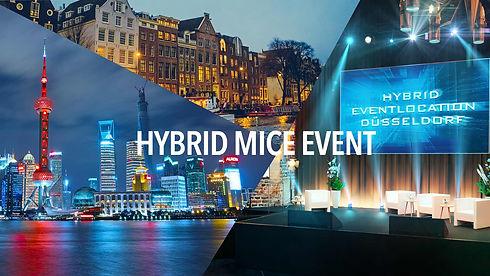 Mice hybrid big1.jpg