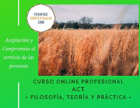 C011_Terapia_de_Aceptación_y_Compromiso