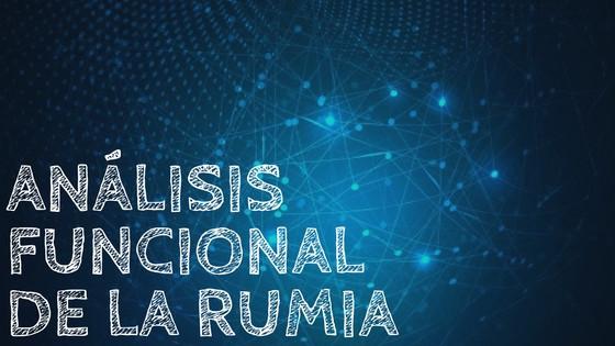 Análisis funcional de la rumia