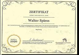 kursausweis_19hunde_2020-u52309.png