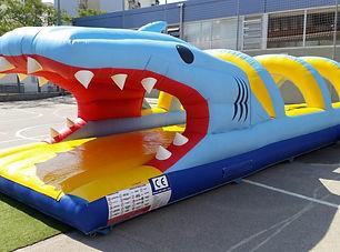 ventry gliss requin + bassin.jpg