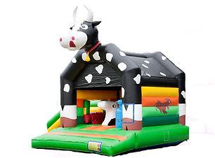 Chateau Vache noir+obstacles.jpg