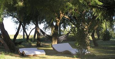 chambres d'hôtes en Camargue
