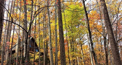 Cabin in the autumn woods at Twin Mountain Resort in Pigeon Forge, Tennessee