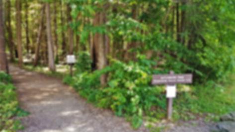 Gatlinburg Trail head, Gatlinburg Tennessee