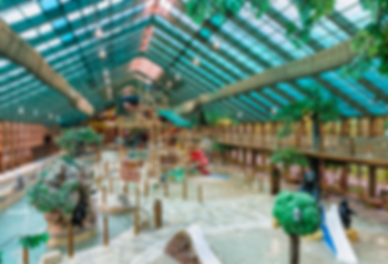 Westgate Indoor Water Park Wild Bear Fal