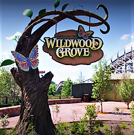 Wildwood Grove Dollywood.PNG