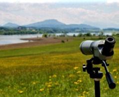 spotting%20scope%20view_edited.jpg