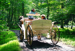 cades cove carriage ride