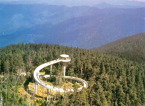 Clingman's Dome in Great Smoky Mountain National Park, view from above