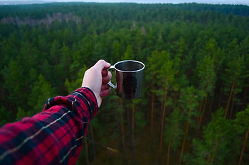 adventure, flannel shirt persn holding a coffee cup above a forest of pine trees