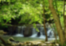 Friendly Falls Waterfall