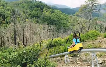 Anakeesta mountain coaster Rail Runner.P