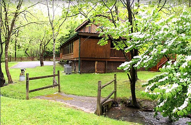 Pet friendly cabin near Dollywood in Pigeon Forge, creek and flowering tree, yard