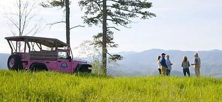 Pink Jeep Tour in the Smoky Mountains, Pink Jeep parked at a mountain view with people talking, Gatlinburg