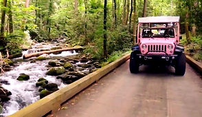 Pink Jeep Tours through Roaring Fork Nature trail in Gatlinburg TN near a rushing creek