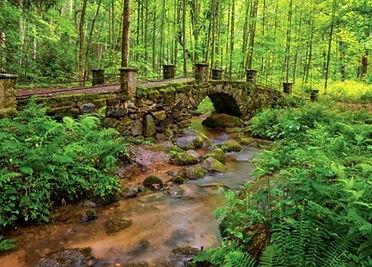 Little River Trail troll bridge, Elkmont troll bridge, Smoky Mountains easy trails