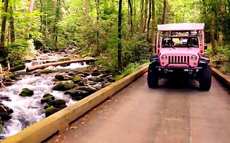 Pink Jeep Tour in the Smoky Mountains, Pink Jeep driving over bridge on Roaring Fork Trail, Gatlinburg