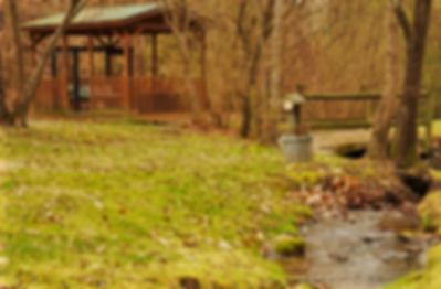 Cabin named Hidden Treasure in Pigeon Forge pet friendly near Dollywood